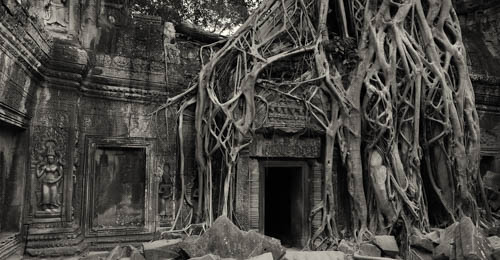 Angkor Wat - Space of Healing